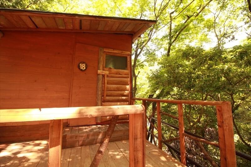 西丹沢 大滝キャンプ場 の公式写真c12413