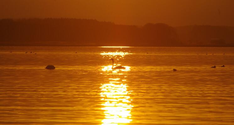 三沢市小川原湖畔キャンプ場の画像mc3780