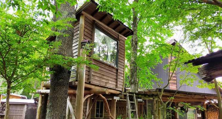 森の手作り屋さん「かたつむり」&「ファーマーズヒル」の画像mc1781