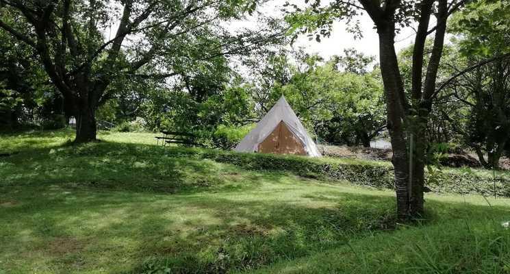 森の手作り屋さん「かたつむり」&「ファーマーズヒル」の画像mc3611