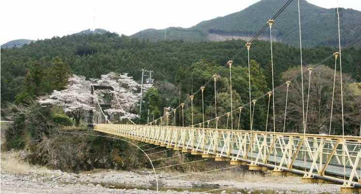 浦川キャンプ村の画像mc5279