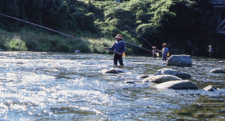 浦川キャンプ村の画像mc5280