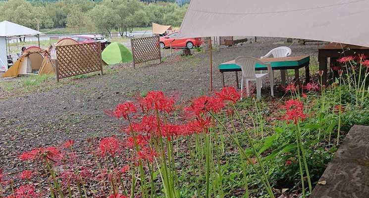 秋葉オートキャンプ場の画像mc3382