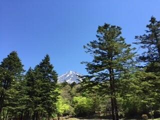 表富士グリーンキャンプ場の画像mc5098