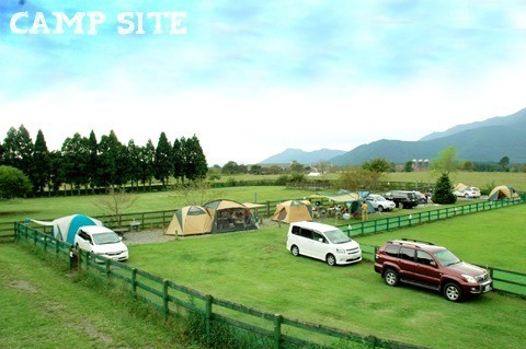 Field Dogs Garden の公式写真c3558