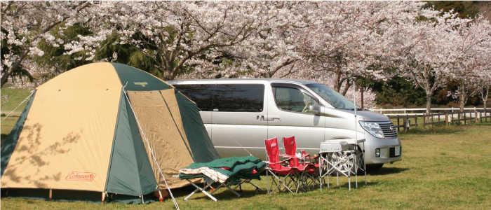 成田ゆめ牧場ファミリーオートキャンプ場の画像mc10960