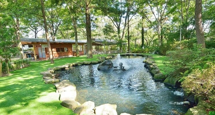 清水公園 キャンプ場の画像mc6307