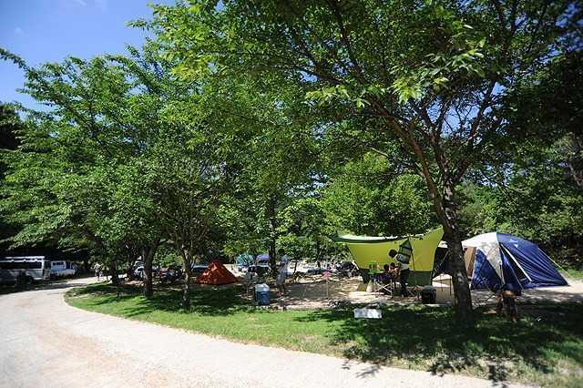 自然 の 森 ファミリー オート キャンプ 場 口コミは最悪最低!?自然の森ファミリーオートキャンプ場で2泊3日最...