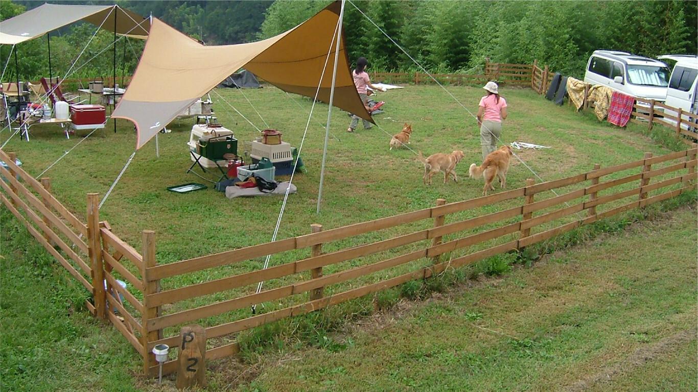 いなかの風キャンプ場 の公式写真c3419