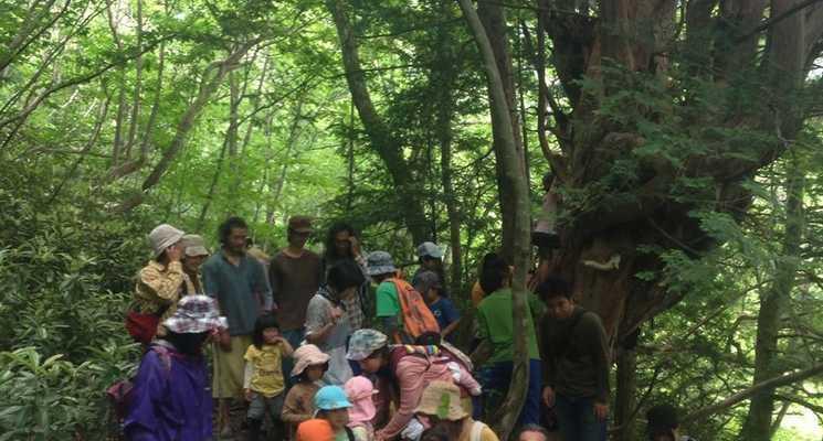 千年の森自然学校の画像mc6849