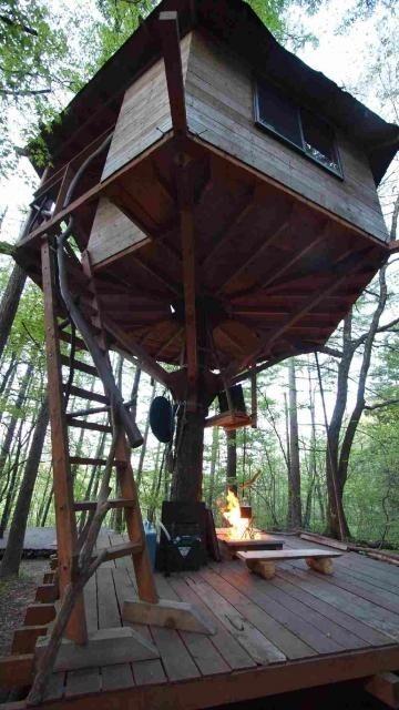 千年の森自然学校 の公式写真c692