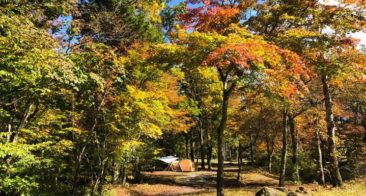 駒出池キャンプ場の画像mc19114