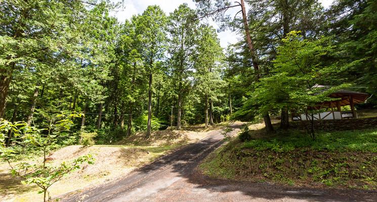 田立の滝オートキャンプ場の画像mc15730