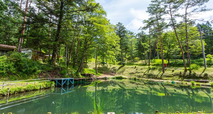 田立の滝オートキャンプ場の画像mc15732