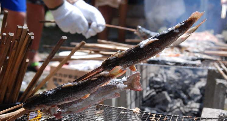 山王谷キャンプ場・たんぽり荘の画像mc15165