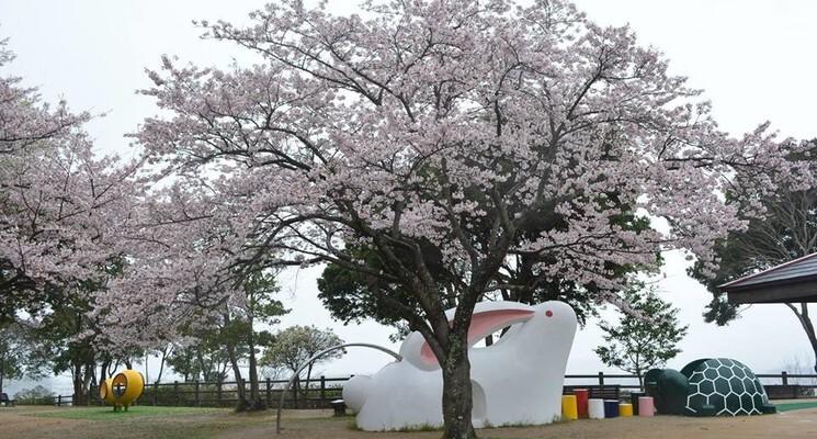 島根県立万葉公園オートキャンプ場の画像mc12031