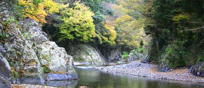 コテージ森林村の画像mc6012