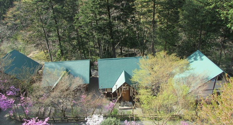 コテージ森林村の画像mc6358