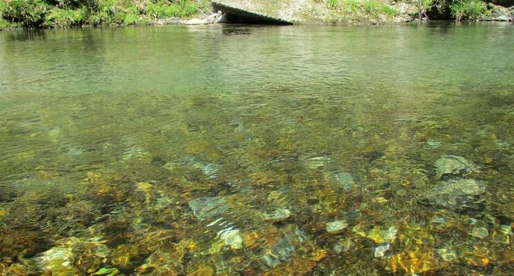 コテージ森林村の画像mc6361