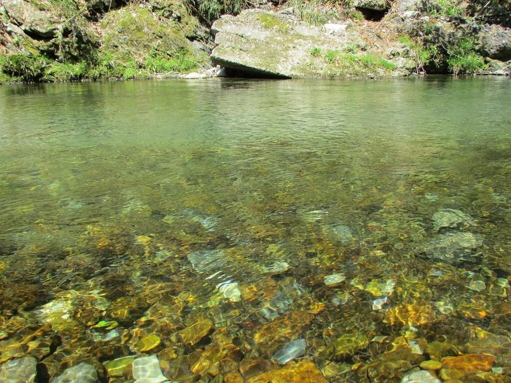 コテージ森林村 の公式写真c6370