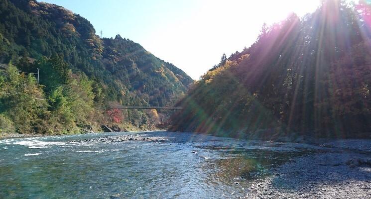 川井キャンプ場の画像mc5981