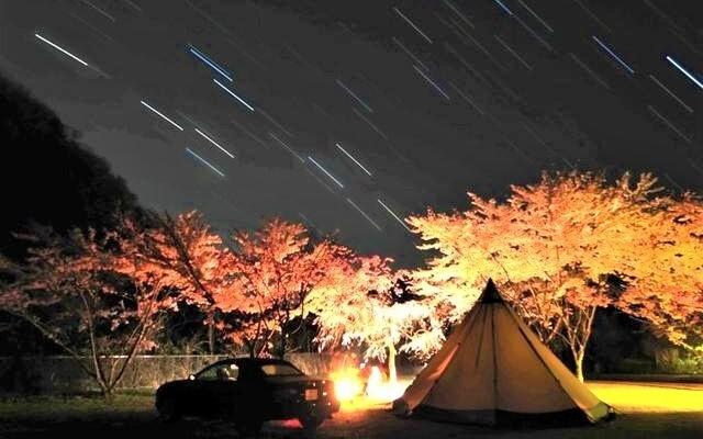 九頭竜国民休養地キャンプ場の画像mc6563