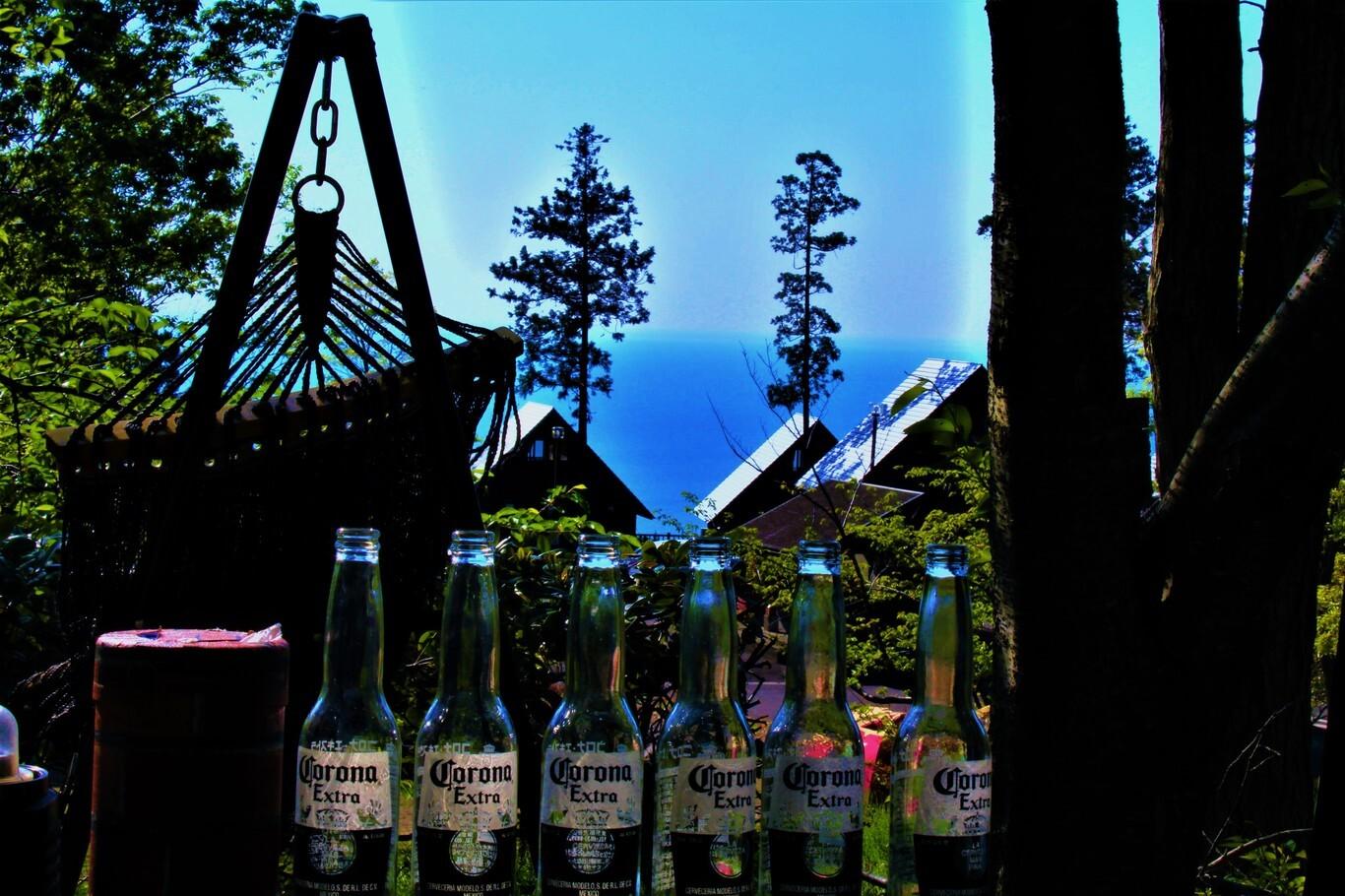 ガラガラ山キャンプ場 SPA&CAMP の公式写真c9678