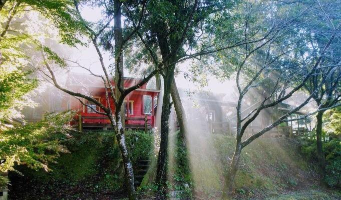 岩屋公園キャンプ場の画像mc6285