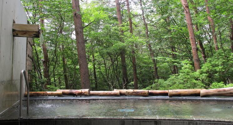 ふくしま県民の森フォレストパークあだたらの画像mc11434