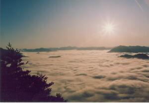 丹波悠遊の森の画像mc6698
