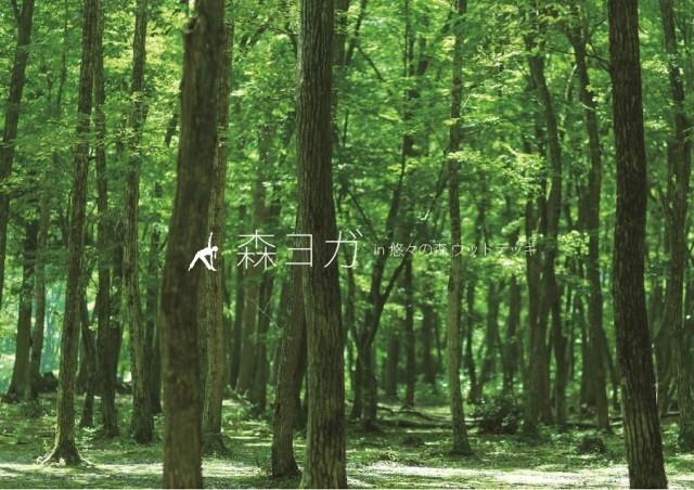 丹波悠遊の森 の公式写真c2554