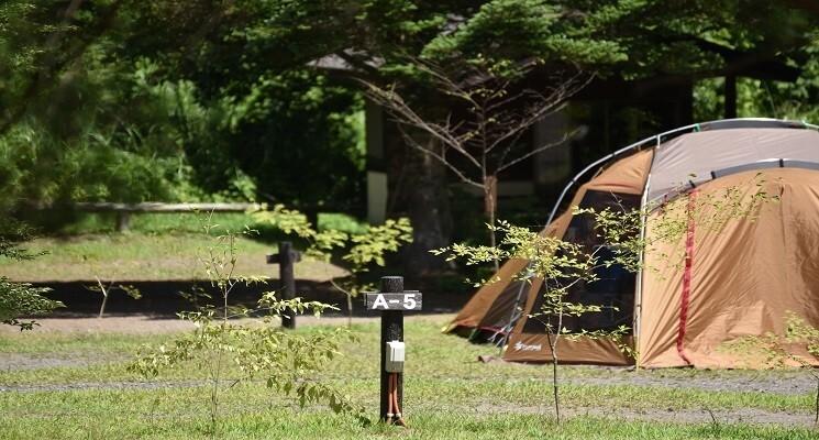 くるみの森キャンプ場の画像mc19204