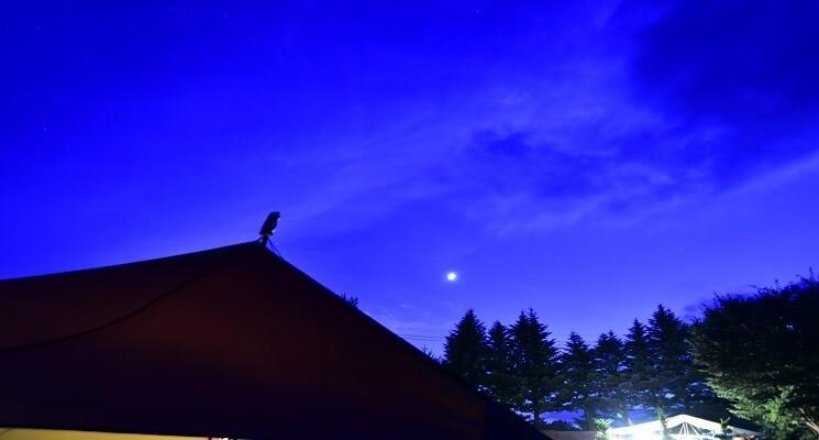 くるみの森キャンプ場の画像mc19205