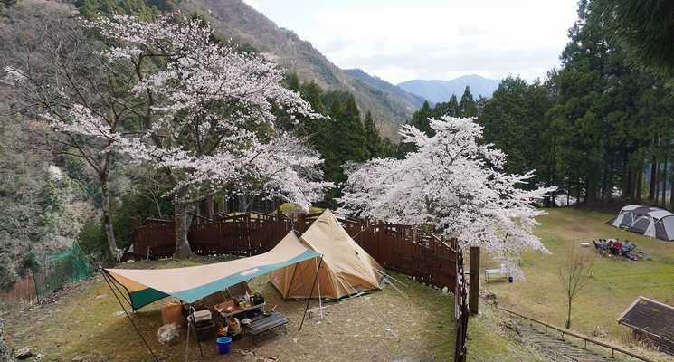 天滝公園キャンプ場の画像mc7404