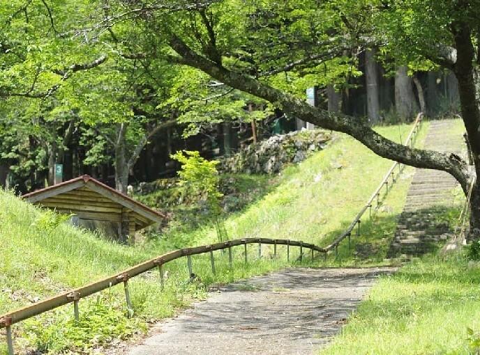 天滝公園キャンプ場 の公式写真c6930
