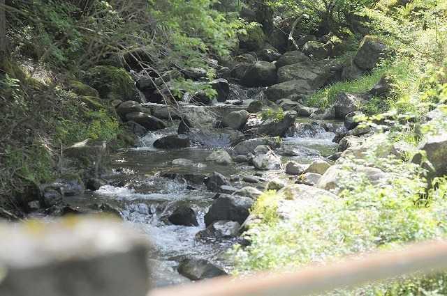 天滝公園キャンプ場 の公式写真c6937