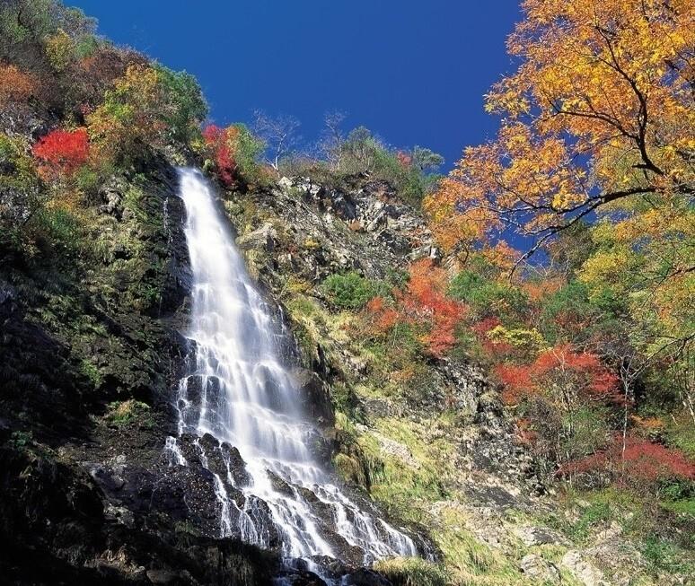 天滝公園キャンプ場 の公式写真c6944