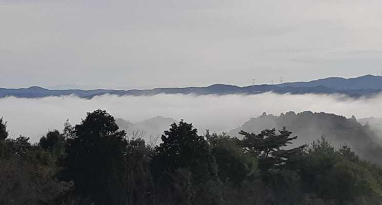 たけべの森公園オートキャンプ場の画像mc18386