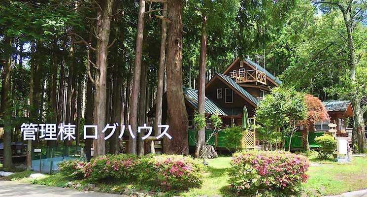 細野高原ツリーハウス村キャンプ場の画像mc11572