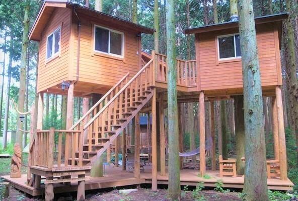 細野高原ツリーハウス村キャンプ場 の公式写真c11927