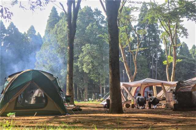 写真 - 昭和の森フォレストビレッジ [ なっぷ ] | 日本最大級のキャンプ場検索・予約サイト【なっぷ】