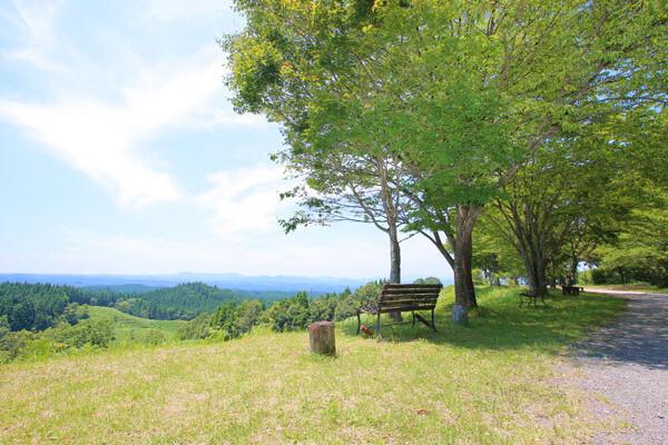 蔵迫温泉さくら コテージ&キャンプの画像mc8332
