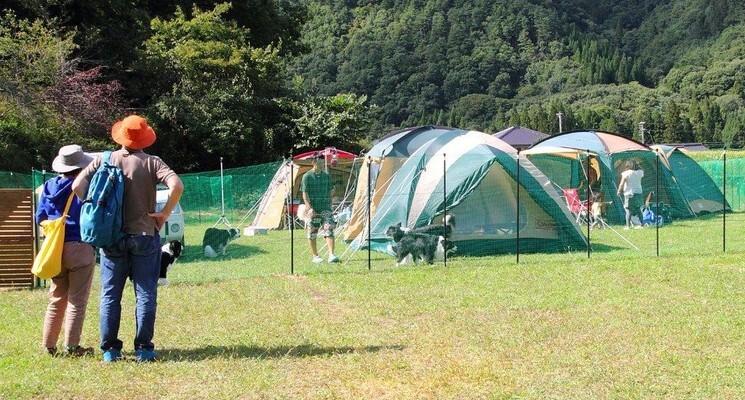 星降るWAN-WAキャンプ場の画像mc6486