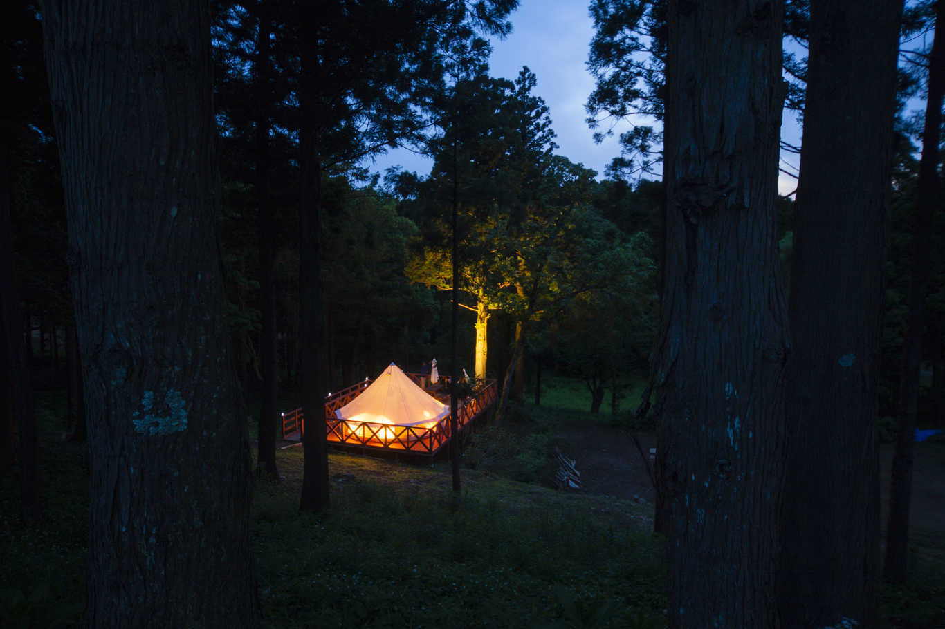 【12月】【CAMPフォレスト】森の中に1日1組だけのプライベートサイトで過ごす豪華なキャンプ!! 画像