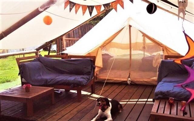Glee Club(グリークラブ)/犬と星見るグランピングサイト の公式写真c12587