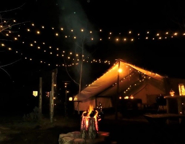 Glee Club(グリークラブ)/犬と星見るグランピングサイト の公式写真c12594
