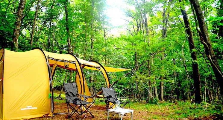 白州・尾白 FLORA Campsite(フローラ キャンプサイト)の画像mc8068