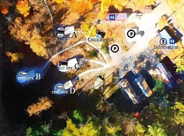 白州・尾白 FLORA Campsite(フローラ キャンプサイト) の公式写真c13808