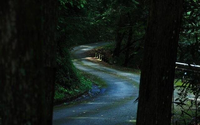 炭焼の杜 明ケ島キャンプ場の画像mc7910