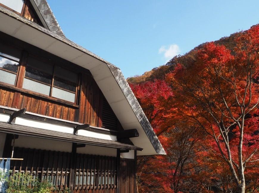 原始村そば処キャンプ場~日本最古のゲストハウス~ の公式写真c8067
